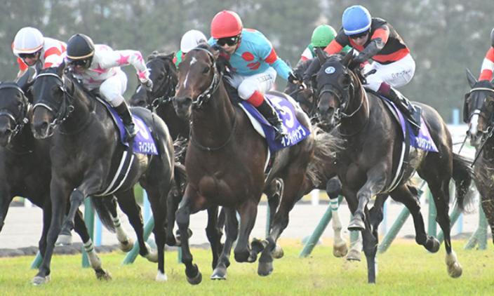 2020年マイルチャンピオンシップの歴史と出走予定馬