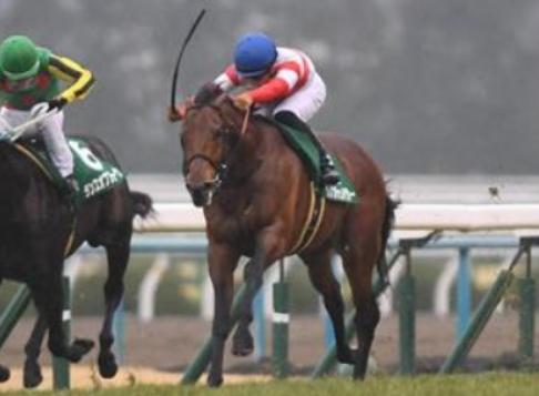 きさらぎ賞|G1馬が多く集うレース!きさらぎ賞の歴代優勝馬紹介